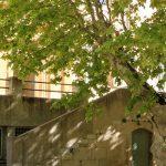 Lycée St Eloi